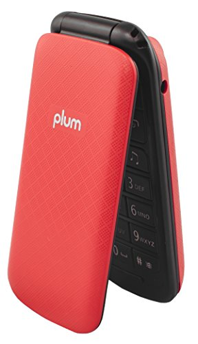 Unlocked Flip GSM Cell Phone - Camera Bluetooth FM Radio Dual Sim USA Worldwide - Red