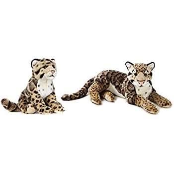 Amazon Com National Geographic Leopard Mother 22 And Leopard