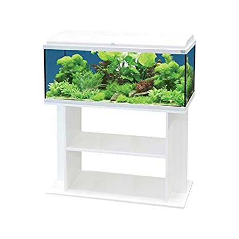 Acuario AquaDream blanco 54 litros équipé + mueble: Amazon.es: Productos para mascotas