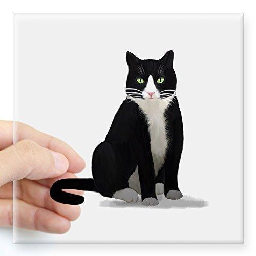 (CafePress Black and White Tuxedo Cat Sticker Square Bumper Sticker Car Decal, 3