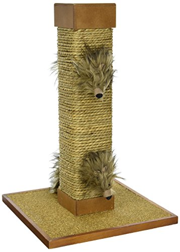 Sage, Natural Cat Scratching Post