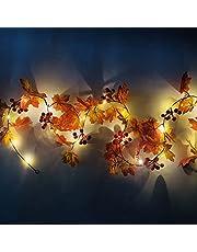 LLDE Lichtketting op batterijen, esdoornbladeren, fee lichten met rode vruchten, waterdichte slinger, herfst, rotan snaar, verlichting, Kerstmis, Thanksgiving, Halloween, feestdecoratie