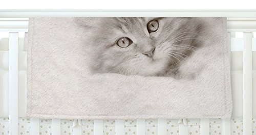 KESS InHouse Monika Strigel Main Coon Kitten Gray Cat Fleece Baby Blanket 40 x 30 [並行輸入品]   B0785Q4HXS