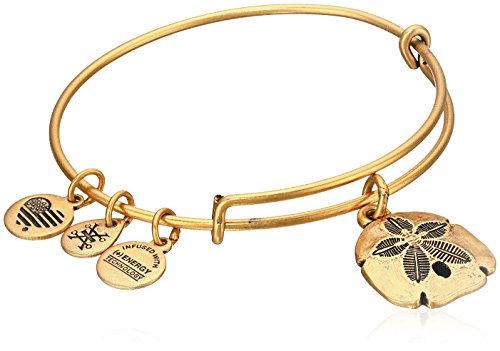 Alex Ani Dollar Bangle Bracelet