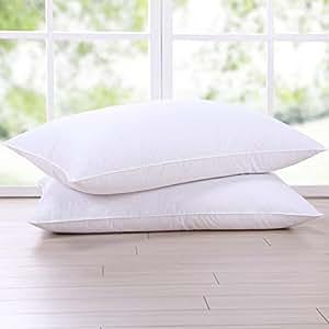 Amazon Com Puredown Goose Down Feather White Pillow