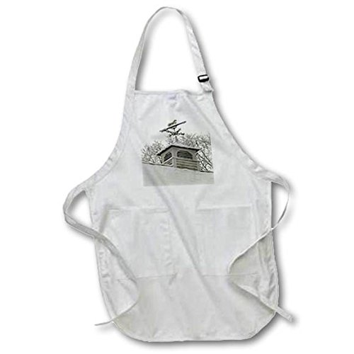 Weathervane Rooftop Black (3dRose TDSwhite – Winter Seasonal Nature Photos - Rooftop Weathervane Winter Scene - BLACK Full Length Apron with Pockets 22w x 30l (apr_284882_4))