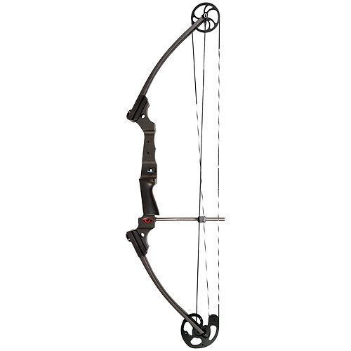 Buy compound bow for beginner hunter