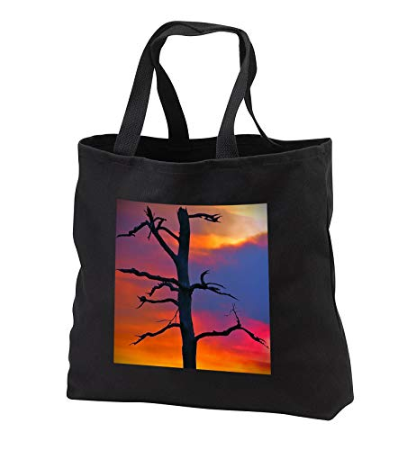 Stamp City - nature - Photograph of a dead tree in the Pine Barrens against a smoky sunset. - Tote Bags - Black Tote Bag JUMBO 20w x 15h x 5d (tb_292964_3)