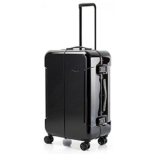 HIDEO WAKAMATSU ヒデオワカマツ ナローII 超軽量 スーツケース L ハードキャリー TSA 64L ブラック 85-76370-BK   B077N22DN3