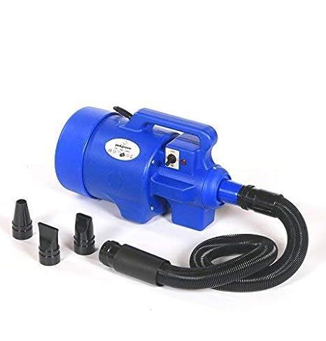 pedigroom Higiene Profesional Para Perros Secador de pelo Arandela Blaster Calefactor Azul: Amazon.es: Productos para mascotas