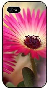 Pink close up flower - iPhone 5C black plastic case / Flowers and Nature, floral, flower