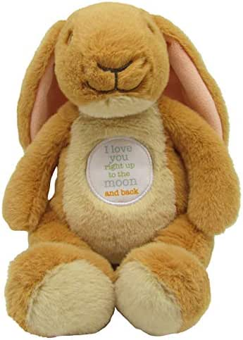 Guess How Much I Love You Nutbrown Hare Bean Bag Plush, 9