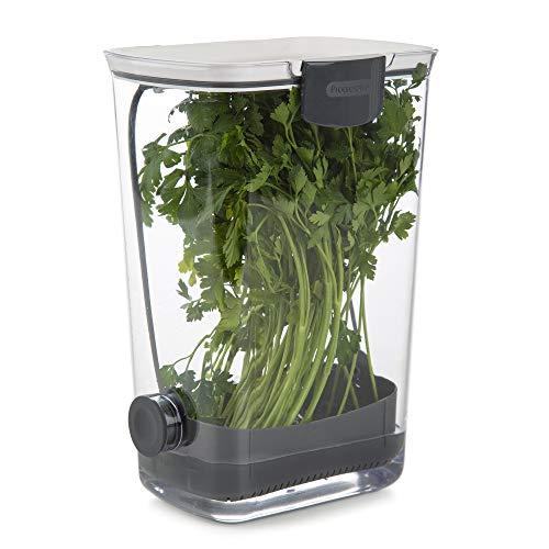 Progressive International PKS-930 ProKeeper herb keeper, 1 Piece, White