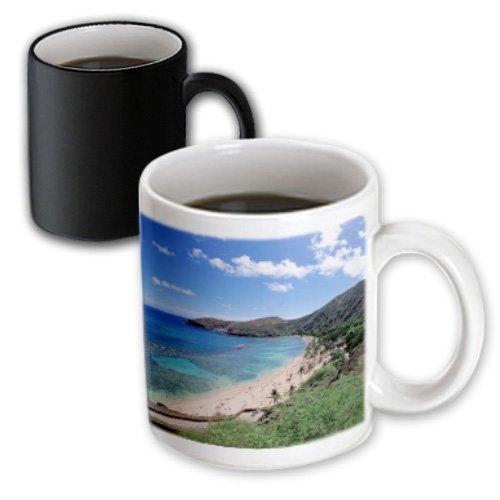 Mug White Hawaii (3dRose Hanauma Bay, Oahu, Hawaii, USA-US12 DPB0807-Douglas Peebles Magic Transforming Mug, 11-Ounce)