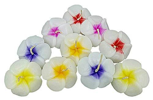 - NAVA CHIANGMAI Plumeria Flower Floating Candles 10 pieces / 1 Set