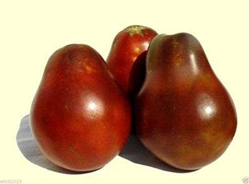 Rich Tomato - 50 Seeds Japanese Black Trifele/truffle Tomato-heirloom Seeds- Chocolaty, Smoky and Rich!