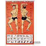 Striking Points Poster for Martial Arts