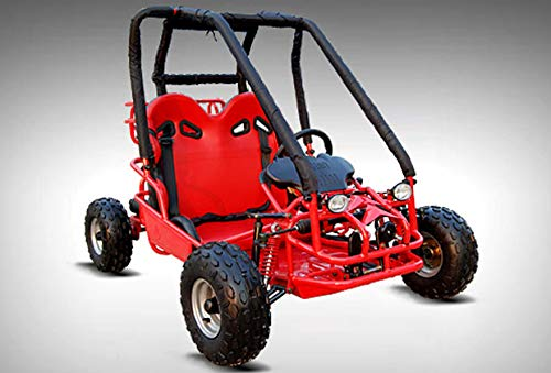 (HML MOTO 110cc Pre-Teen Go Kart 2-Seater Gas Powered Off-Road Go Cart for Kids and Youths Electric Start (red))