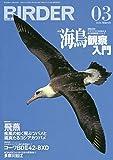 BIRDER(バーダー)2020年3月号 海鳥観察入門
