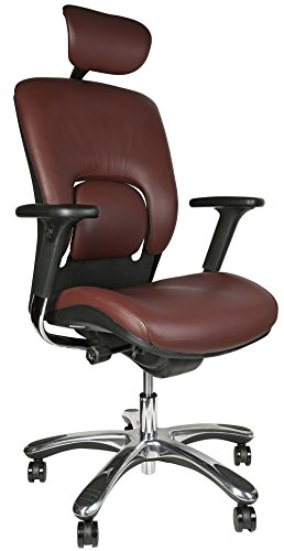 GM Seating Ergolux Genuine Leather Execu - Executive Burgundy Leather Shopping Results