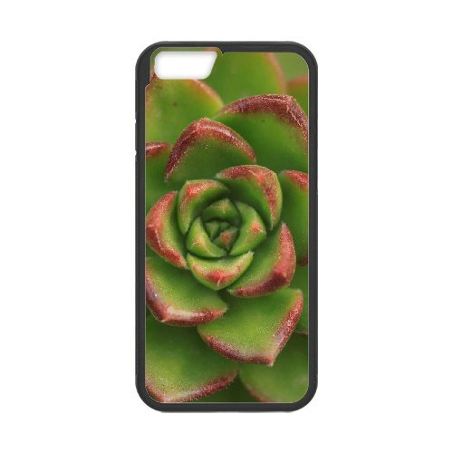 "SYYCH Phone case Of Succulent Plants Cover Case For iPhone 6 Plus (5.5"")"