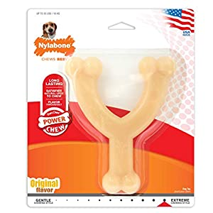 Nylabone Dura Chew Regular Original Flavored Wishbone Dog Chew Toy, Up to 35 LBS