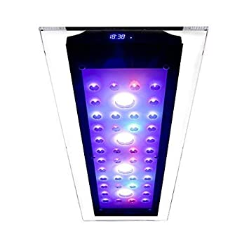 Iluminación del acuario | para agua del mar | 220 vatios | programable: Amazon.es: Electrónica