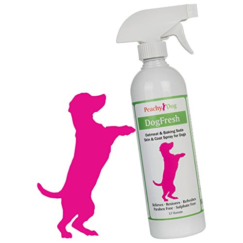 DogFresh-Natural-Oatmeal-Skin-Coat-Spray-Effectively-Soothes-Irritations-Moisturizes-Heals-Skin-Repairs-Damaged-Hair-Neutralizes-Odors-Freshens-Detangles