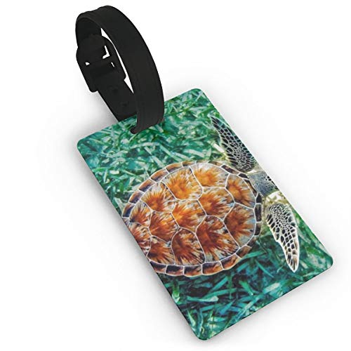 GKEEHR Luggage Tag Sea Turtle Silicone Luggage Tag with Name ID Card Perfect to Quickly Spot Luggage Suitcase