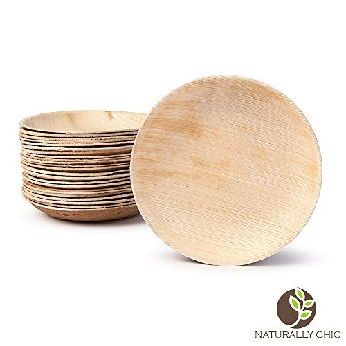 Naturally Chic Palm Leaf Compostable Plates | 6