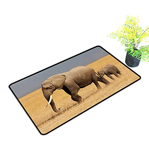 - Large Outdoor Door Mats African Elephant (Loxodonta africana) Cow with Young Calf,Amboseli National Park,Kenya Use for Entrance Outside Doormat Patio W23 x H15 INCH