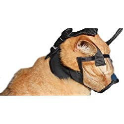 PURR Muzzle for Cats. Allows Access to Teeth and Mouth. Recommended by Vets. (1 (Kittens 10-14 weeks old))