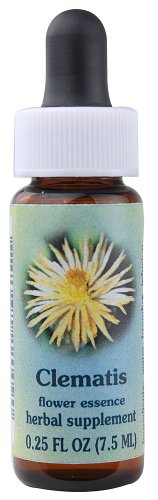Dropper Clematis (Flower Essence Services Supplement Dropper, Clematis, 0.25 Fluid Ounce)