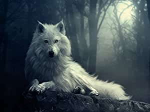 Amazon.com: Van Eyck White Wolf Oil Painting Prints on Canvas Abstract Wall Art Picture for Home