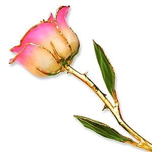 Long Stem Dipped 24k Gold Trim White Pink Rose In Gold Gift Box 82