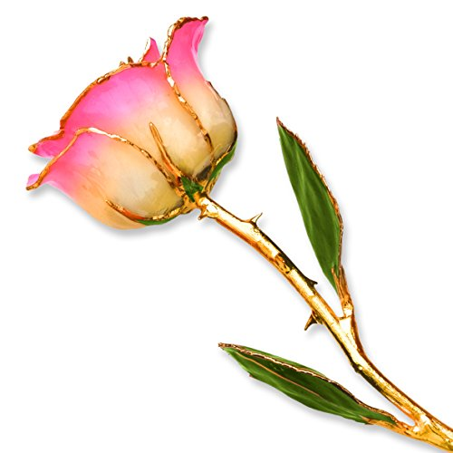 Long Stem Dipped 24k Gold Trim White Pink Rose In Gold Gift Box