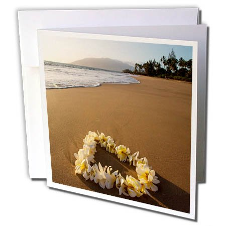 3dRose Danita Delimont - Beaches - USA, Hawaii, Maui, Lie on Kihei Beach with Reflections in Sand - 1 Greeting Card with envelope (gc_259255_5) (Sand Reflections)