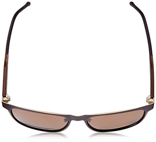 Tommy Hilfiger Brown Brown Matte brown Th1394s Sunglasses Rectangular xAwqxR7Tp