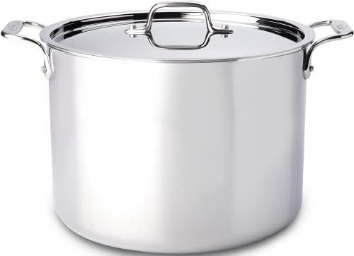 All-Clad 4512 Stainless Steel Tri-Ply Bonded Dishwasher Safe Stockpot with Lid Cookware, 12-Quart, Silver