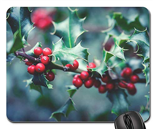 Mouse Pad - Plant Berry Berry Red Bush Close Holly Christmas (Holly Bush Berries)