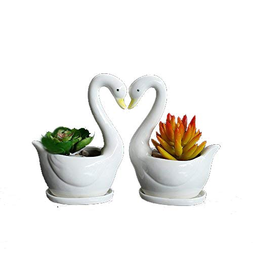 2pcs Swan Modern White Ceramic Succulent Planter Pots/Mini Flower Plant Containers for Valentine's Day,Gift,offtice,Desk ()