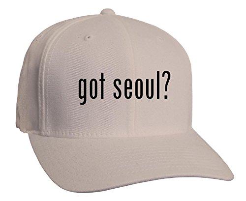got-seoul-adult-baseball-hat-silver-large-x-large