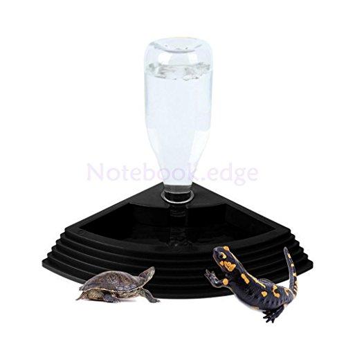 iguana humidifier - 9