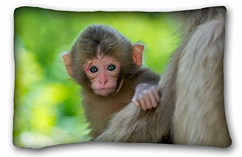 "Soft Pillow Case Cover ( Animal Monkey ) Pillow Covers Bedding Accessories Size 20""X30"" suitable for X-Long Twin-bed PC-Orange-34212"