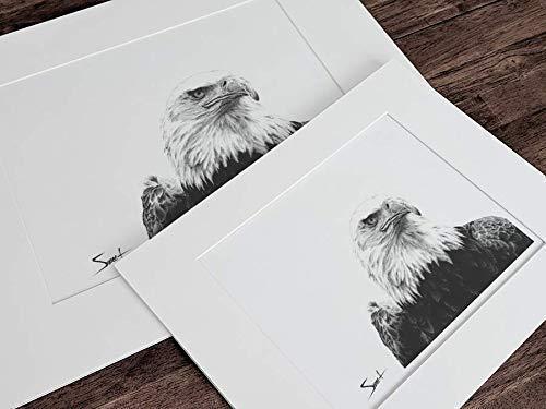 Eagle Wall Art Bird Print Bird Decor Eagle Decor Eagle Painting Eagle Gifts Watercolor Bald Eagle Print