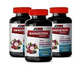 Weight Loss multivitamin for Men - Mangosteen Extract Complex 1440MG - Natural ANTIOXIDANT - Acai Berry Pills - 3 Bottles 180 Capsules