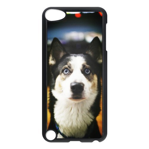 100% NEW Personalized Cute huskyCustom Hard Case Cover Protector foriPod Touch 5th case£¬Classic pop style 4 ()