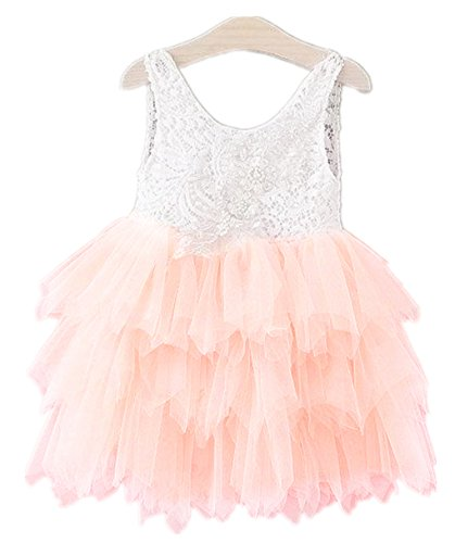 Embroidered Beaded Dress (2Bunnies Girl Baby Girl Embroidered Beaded Victorian Lace Tiered Tutu Princess Pageant Party Dress (Cream Pink, 4T))