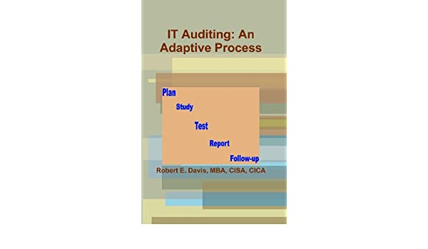 Amazon It Auditing An Adaptive Process Ebook Robert E Davis