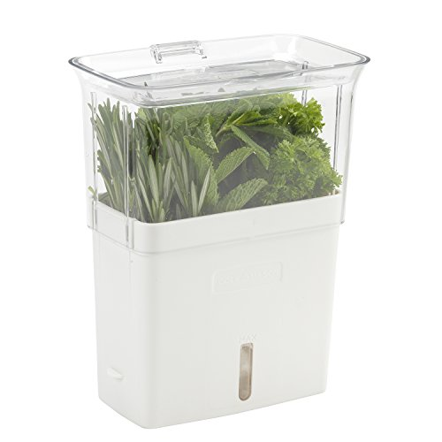 COLE & MASON Fresh Herb Keeper, Container, Clear (Fresh Herb Container Garden)
